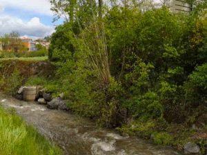 Photo plan large du ruisseau d'un terrain pour logements neuf habitat participatif à Saint Chamond avec Chez moi demain, AMO des co-constructeurs