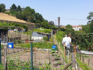 Photo du haut d'un terrain pour logements neuf habitat participatif à Saint Chamond avec Chez moi demain, AMO des co-constructeurs