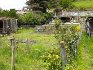 Photo plan large d'un terrain pour logements neuf habitat participatif à Saint Chamond avec Chez moi demain, AMO des co-constructeurs